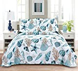 Jarson Summer Beach Bedspreads Set Seashell Conch Coverlet Sets King Size,3Pcs Lightweight Coastal Quilts Starfish Seahorse Seaweed Printed Bedding Pillow Shams