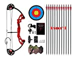 PANDARUS Compound Bow Topoint Ar...