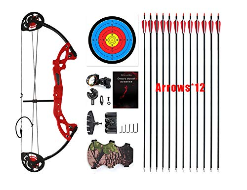 """PANDARUS Compound Bow Topoint Archery for Youth and Beginner, Right Handed,19""""-28"""" Draw Length,15-29 Lbs Draw Weight, 260 fps, Package with Archery Hunting Equipment (Red)"""