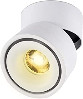 TOPMO 10W Indoor LED Ceiling Spotlight Fixture Surface Mounted Accent Spot Light Adjustable Wall Spot Lighting,10X10CM, Not Dimmable,Aluminum Wall Lamp or Spot Light (White-Warm White)