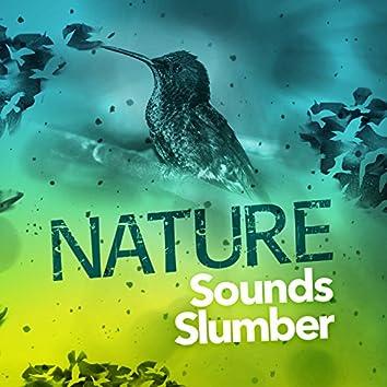 Nature Sounds Slumber