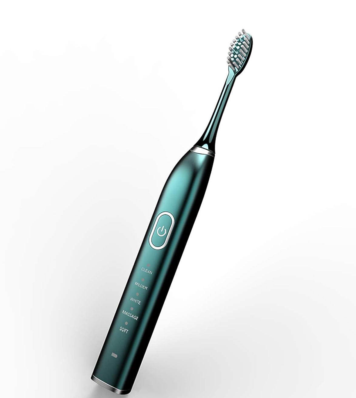 出口無心ブラウス超音波インテリジェント電動歯ブラシ、5/10ブラシヘッド付き防水成人充電式歯ブラシを白くする家庭用5/15ファイル,グリーン,5thgear