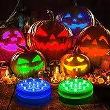 Unterwasser Licht, OxyLED Wasserdichtes LED Licht mit RF-Fernbedienung 13 RGB LED Unterwasserleuchten Poolbeleuchtung für Schwimmbad, Aquarium, Vasenbasis, Garten, Halloween, 2 Stück