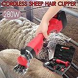 WU Tondeuse électrique sans Fil pour Moutons Batterie Rechargeable au Lithium de 4000mAh, Cisailles de chèvre pour Ferme Rasage de Fourrure 280W