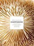 Champignons (French Edition) by Regis Marcon Nathalie Nannini Philippe Barret(2013-09-12) - French and European Publications Inc - 12/09/2013