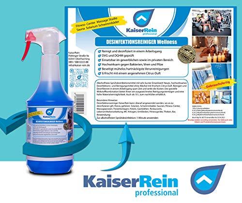 Desinfektionsreiniger Wellness/Spa 1L zur Reinigung und gleichzeitigen Desinfektion zur Reinigung und Desinfektion besonders für Solarium Sauna-, Yogamatten-, Fitnessgeräte-, Massageliegenreiniger - 2