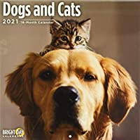 Dogs and Cats 2021