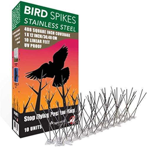 ASPECTEK Kit spuntoni per Uccelli in Acciaio Inox, Copre 3 Metri