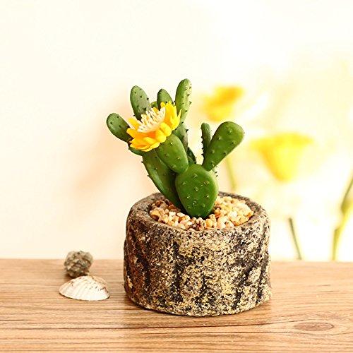 ndier attenuare del Giardino piante in vasi simulazione Creativa fioriere di Ceramica decorazione per l' ufficio della carne, cuenca ROTONDA della Porcellana del Cactus