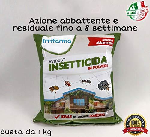 Insetticida in Polvere azione rapida pronto all uso, Abbattente e Residuale, Avidust, per Formiche,...