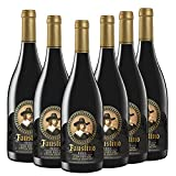 Faustino Icon Reserva Especial Selección | 6 Botellas