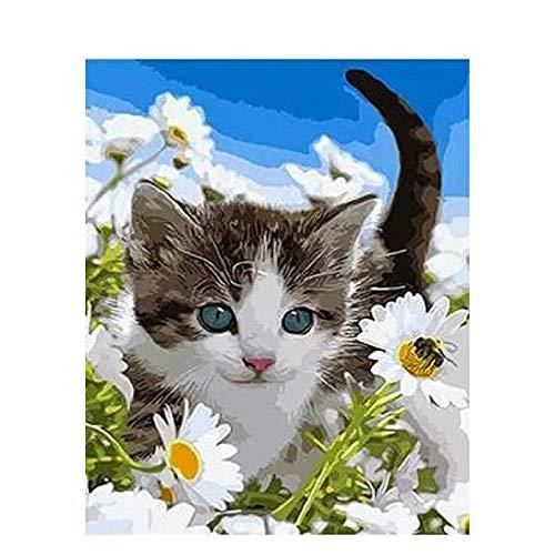 Malen nach Zahlen Digitales Katzen?lbild auf Leinwand DIY Bastelsets F?rben nach Zahlen Zeichnung Hauptdekoration 40x50 cm