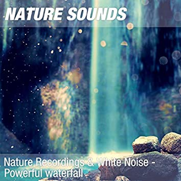 Nature Recordings & White Noise - Powerful waterfall
