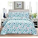 3-Piece Summer Coastal Quilt Set with 2 Pillow Shams (Full/Queen)