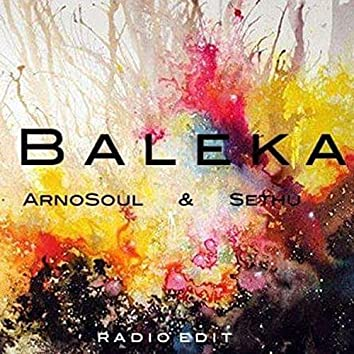 Baleka (Radio Edit)