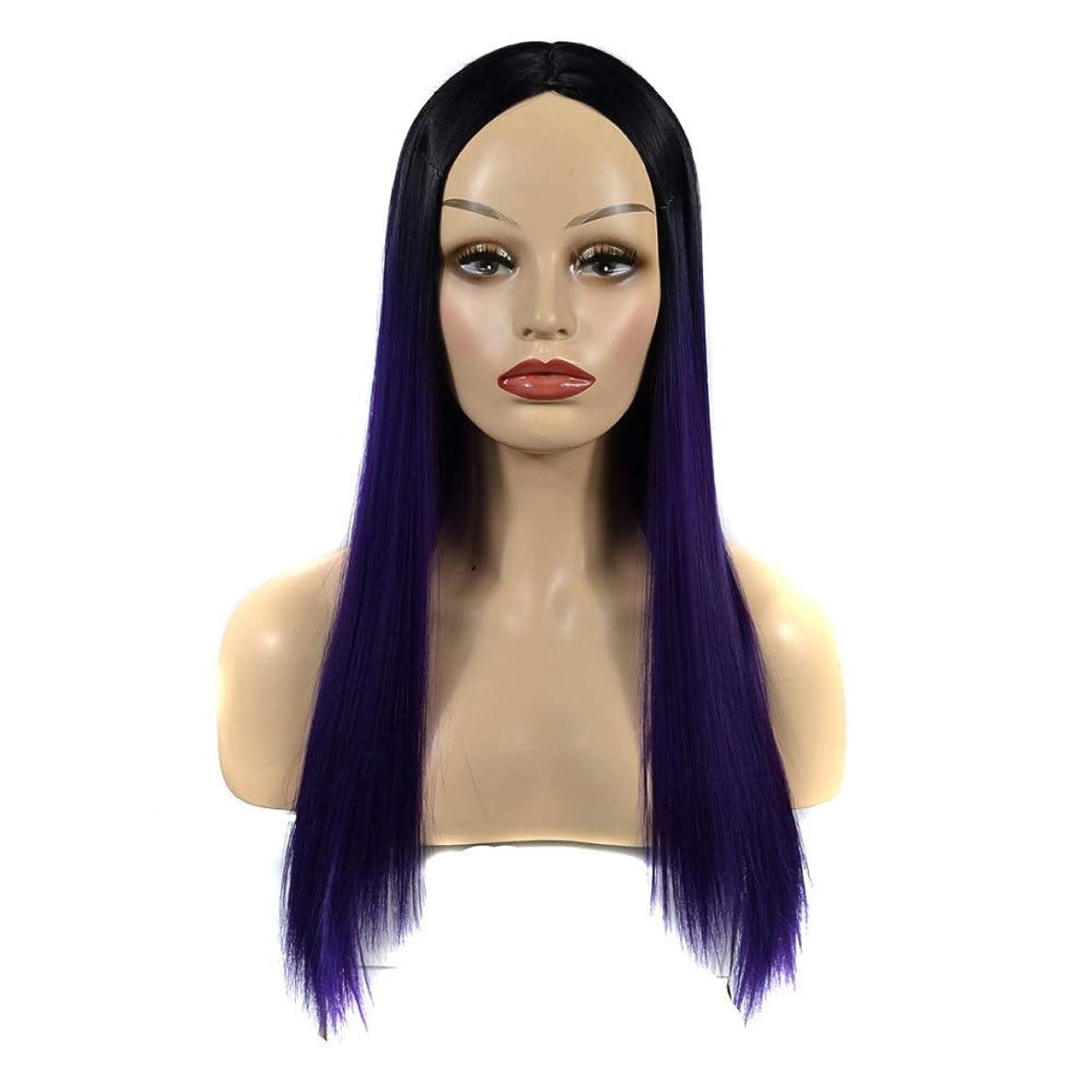 人類反抗感謝祭HOHYLLYA 女性の長いストレートヘアブラックグラデーショングレープパープルミドルパートウィッグデイリードレスパーティーウィッグ (色 : ダークパープル, サイズ : 60cm)