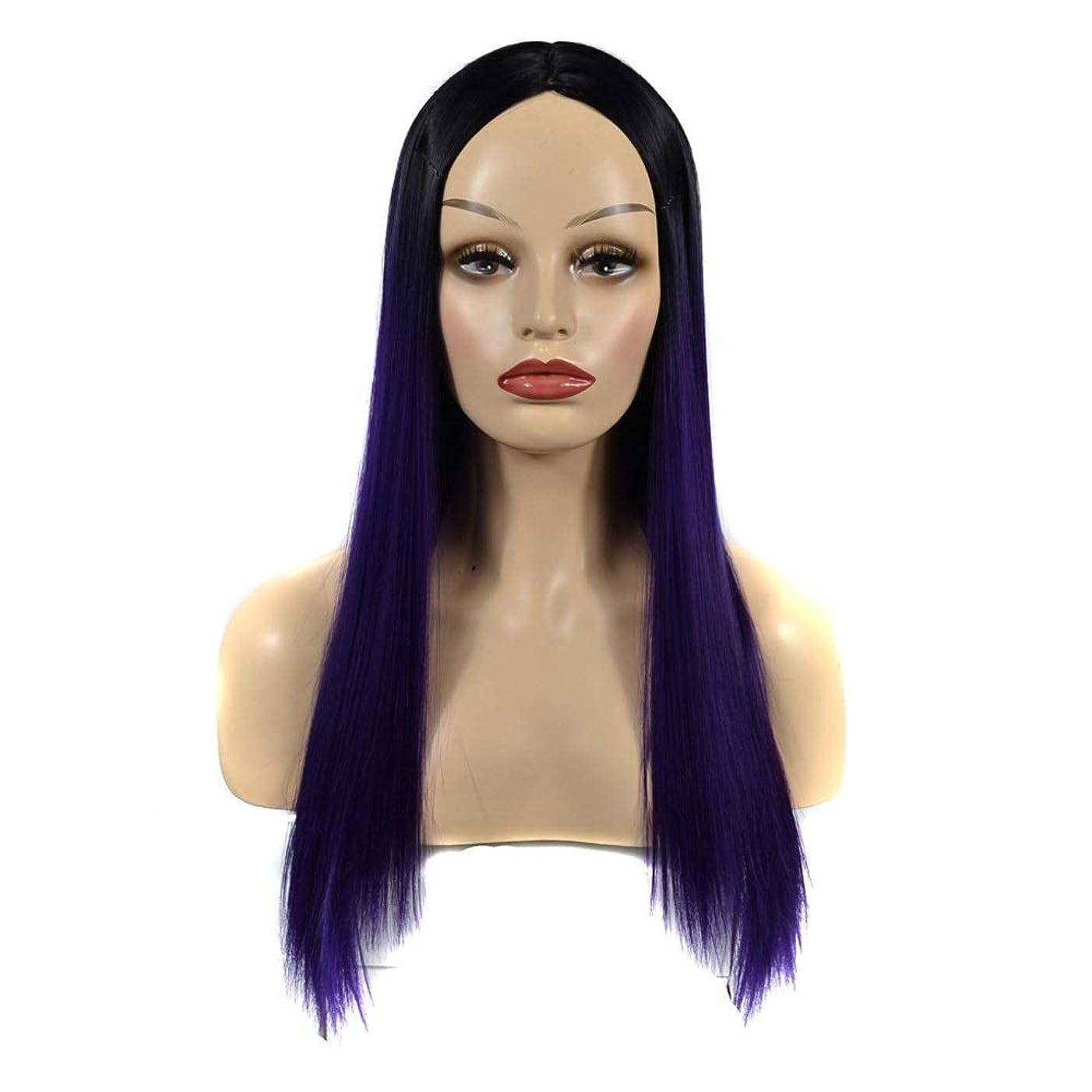 豆消える関連付けるBOBIDYEE 女性の長いストレートヘアブラックグラデーショングレープパープルミドルパートウィッグデイリードレスパーティーウィッグ (色 : ダークパープル, サイズ : 60cm)