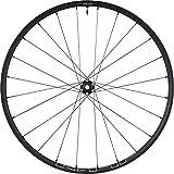 CYCLING_EQUIPMENT Rueda del. MT600 29' 15x110 EP / 24C / TL, Adultos Unisex, Negro (Negro), Talla Única