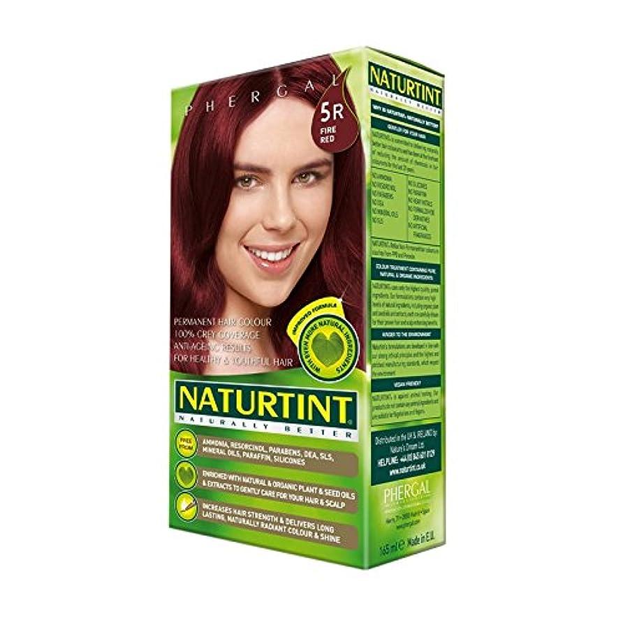 将来の重量懸念火災赤5R Naturtint髪の色 - Naturtint Hair Colour 5R Fire Red (Naturtint) [並行輸入品]