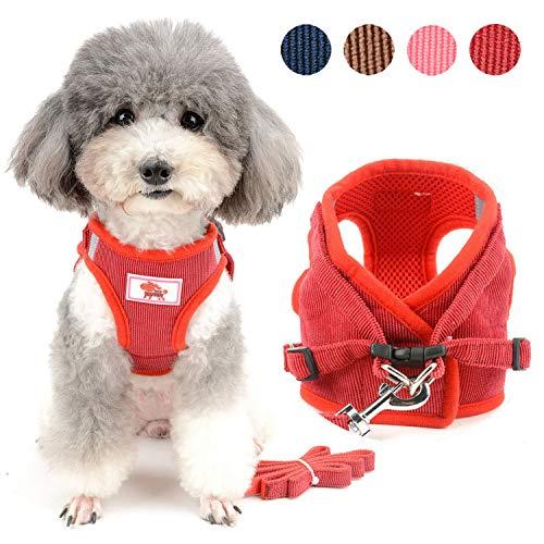 Zunea Pettorina e guinzaglio per cani di piccola taglia, regolabile, riflettente, in morbido velluto a coste per cuccioli, Chihuahua, gatti
