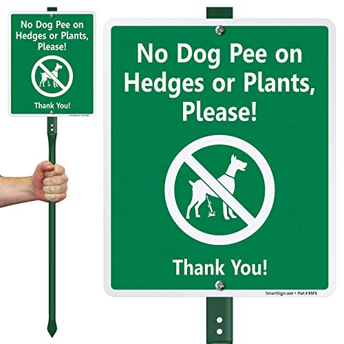 SmartSign 'No Dog Pee On Hedges Or Plants, Please! Thank You!' LawnBoss Sign   10' x 12' Aluminum Sign With 3' Stake