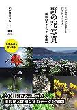 野の花写真 撮影のテクニックと実践 ~デジタルカメラで楽しむ四季折々の草木 (かんたんフォトLife)