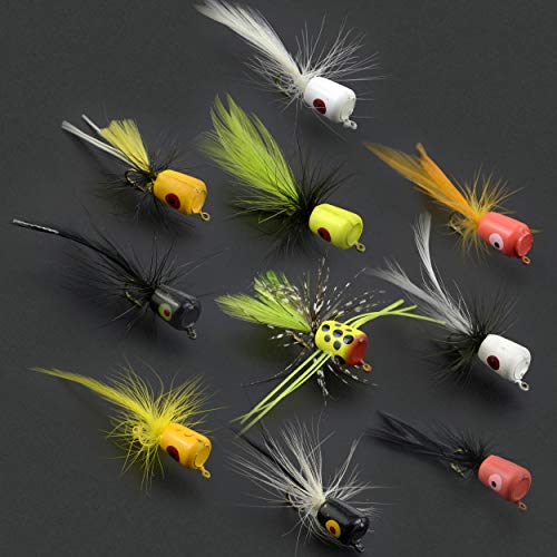 Fly Fishing Flies Kit Fly Assortment Trout Bass Fishing with Fly Box, with Dry/Wet Flies, Nymphs, Streamers,Fly Poppers (pop10)