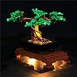 hyqx luci led kit per lego 10281 albero bonsai ,set di illuminazione luce led light kit compatibile con lego 10281(modello lego non incluso)