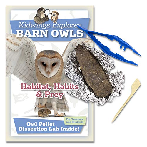 10 Barn Owl Pellet Dissection Kit With Tweezers and Guide