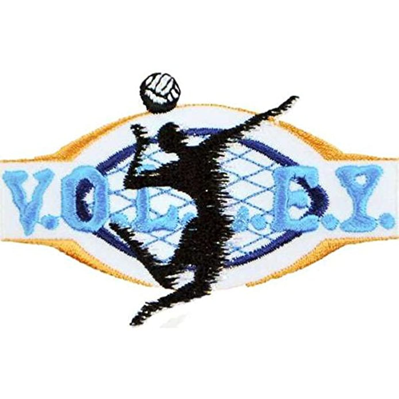 Expo International Volleyball Sport Embroidered Iron-on Applique Trim Embellishment, Multi-Color