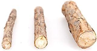 Catnip Silvervine Sticks Cat Treat Matatabi Stick Cat Teeth Cleaning Stick Rod with Pure Natural Catnip Small Animal Molar...