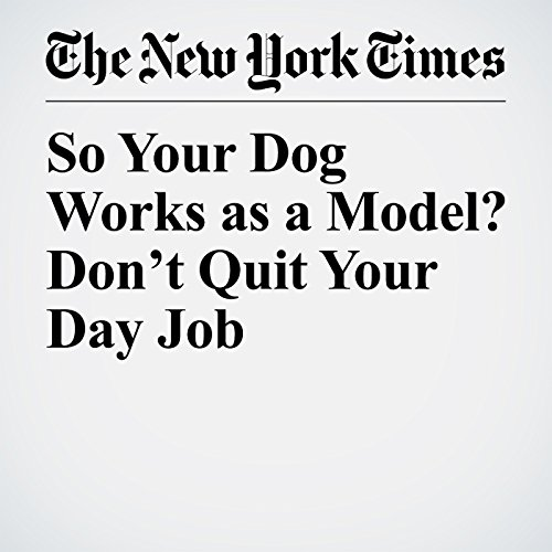 So Your Dog Works as a Model? Don't Quit Your Day Job audiobook cover art