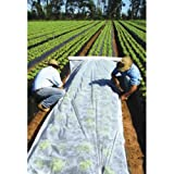 MEGRAN Gartenvlies 1,6/3,2x5-100m weiß Pflanzvlies weiß zur Abdeckung von Gemüsebeeten (1,6X100M)