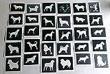 25x Plantillas huella de perro en forma de corazón para grabado en cristal mixtos regalo presente cristal hobby craft