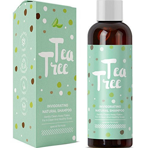 Pure Tea Tree Oil Daily Shampoo Cleanser for Itchy Dry Scalp and Dandruff with Hair Loss Preventing...