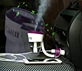 RTIE Portable Car 2 Purifier Humidifier Portable Humidifiers Air Purifier (Purple) …