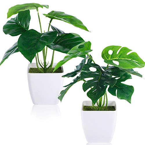 CEWOR 2 Packs Artificial Mini Greenery Potted Plants Fake Tropical Monstera...