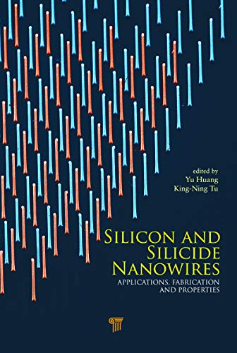 Silicon and Silicide Nanowires: Applications, Fabrication, and Properties (English Edition)