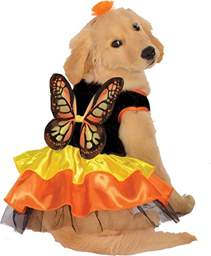 Monarch Butterfly Pet Costume -Dog Small