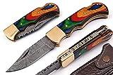 AishaTech Beginner Folding Lock Blade Pocket Knife Damascus Steel Blade with Sharpening Rod Multicolor Wood Handle
