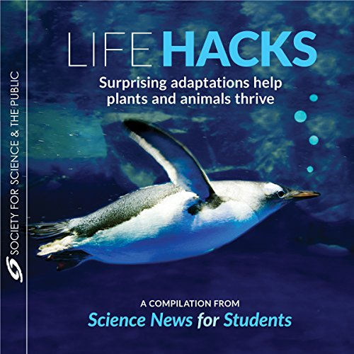 Life Hacks     Surprising Adaptations Help Plants and Animals Thrive              By:                                                                                                                                 Esther Landhuis,                                                                                        Susan Milius,                                                                                        Sharon Oosthoek,                   and others                          Narrated by:                                                                                                                                 Neil Holmes                      Length: 1 hr and 11 mins     Not rated yet     Overall 0.0