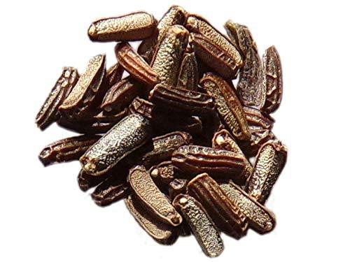 Verveine Officinale - 0,10 grammes - Verbena Officinalis - Common Vervain - SEM05
