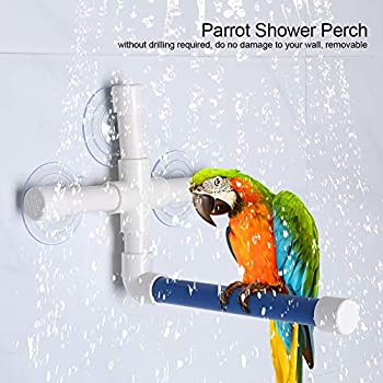 Jadeshay Perchoir Ventouse Perroquet - Perchoir pour Oiseaux en Plastique, Support pour Douche Plate-Forme pour Animaux de Compagnie avec ventouses(Couleur : Bleu et Blanc)
