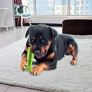 Nfyoi Dog Chew Brosse à dents Brosse à dents de nettoyage Jouets, clé à mâcher pour chiens dent de nettoyage jouet en caoutchouc résistant aux morsures non toxiques d'entraînement dent de nettoyage Jouets