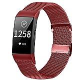 Runostrich Correa de reloj de metal compatible con Fitbit Charge 4/Charge 3, de acero inoxidable, magnética, de repuesto, para mujeres, M?nner f¨¹r Charge 4/Charge 3/SE,