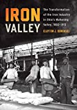 Iron Valley: The Transformation of the Iron Industry in Ohio's Mahoning Valley, 1802–1913 (Trillium Books) (English Edition)