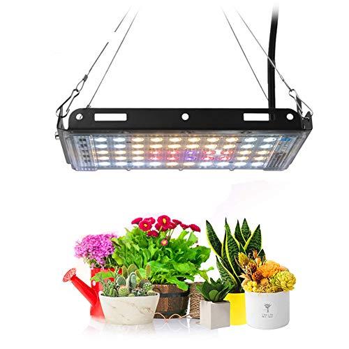 POOPFIY 800W Phyto Lamp LED Grow Light para Plantas Full Spectrum Blanco con Rojo Azul Grow Carpa Interior