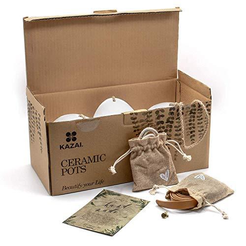 Kazai.® | Wandvasen 3-teiliges Set aus weißer Keramik - 5