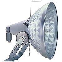 岩崎電気 HID投光器(一般形耐食仕様) H567DX