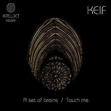 A Set Of Brains